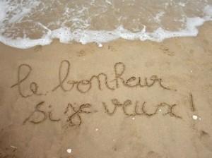 definition du bonheur 300x224 photo